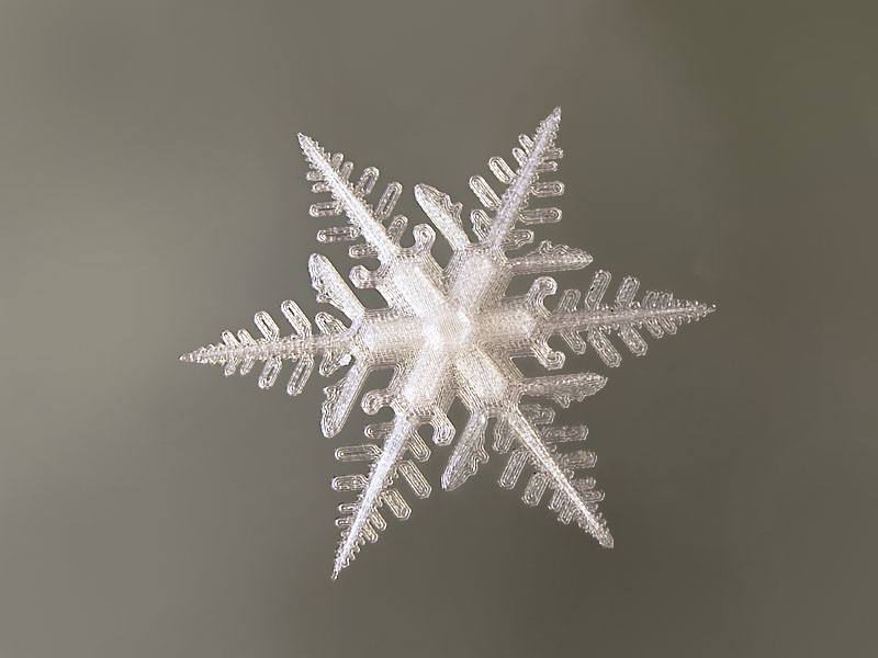 snowflake_b_800x600